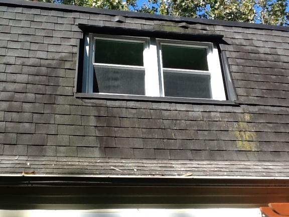 replacement window warranties